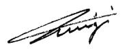 luigi (1)